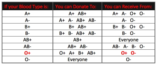 Your Blood Type O+